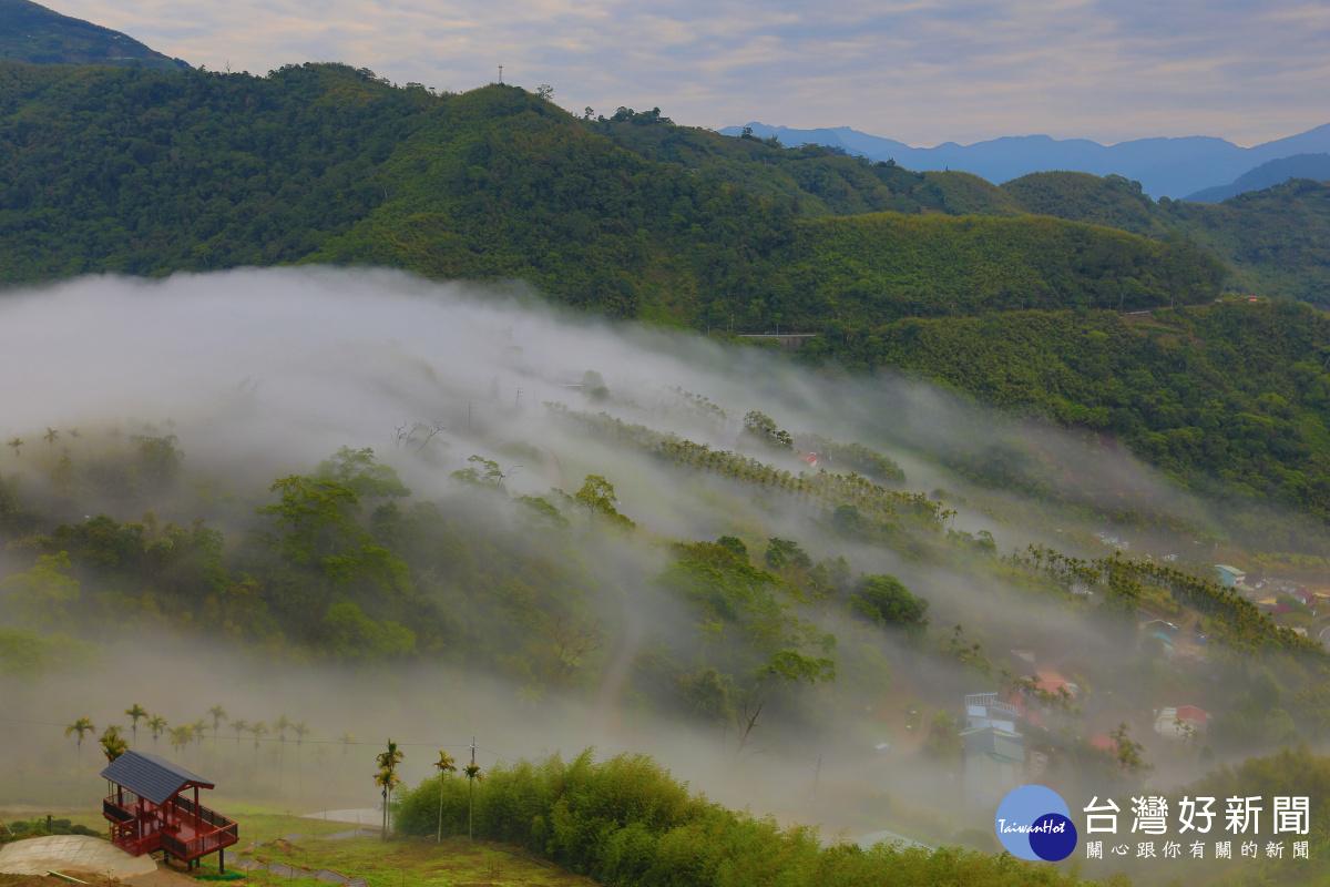 阿里山添新景點 公興村龍美登山賞景觀雲瀑