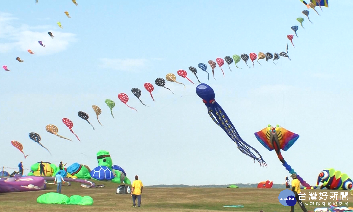 新竹國際風箏節 章魚、老虎、海綿寶寶飛上天